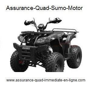 Assurance Sumo Motor